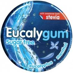 EYCALYPTUS Gum Sugar Free καραμέλες 24 τεμ.